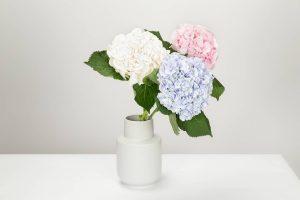 Jak przywrócić sztucznym kwiatom piękny wygląd?